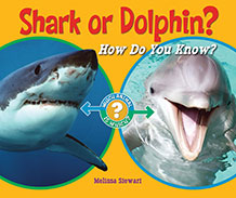 Shark or Dolphin? HOw Do You KNow?